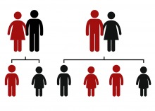 transmission génétique